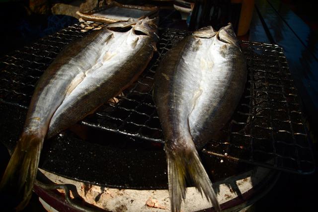朝ご飯はカマスを炭で焼いて頂きました。サンキュー、太平洋。