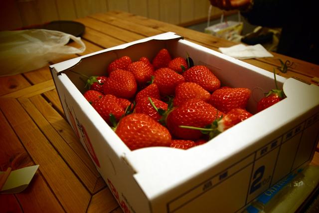 鰹の堆肥で作られたイチゴ、最高。いや、本当に最高なんだってば。