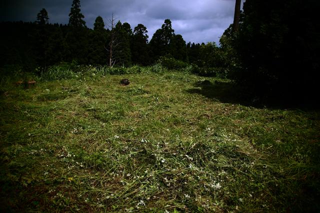 労働後。昔、メディスンマンのローリングサンダーの家に行ったとです。彼は一切の殺生をしないので、草ぼーぼー。さすがにそれは避けたい。