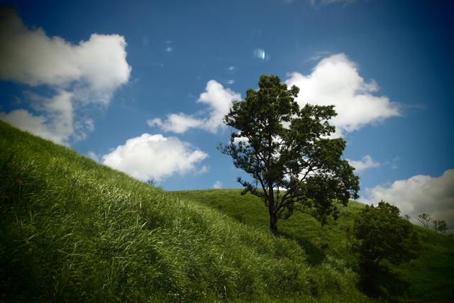 山はもう夏の空です。