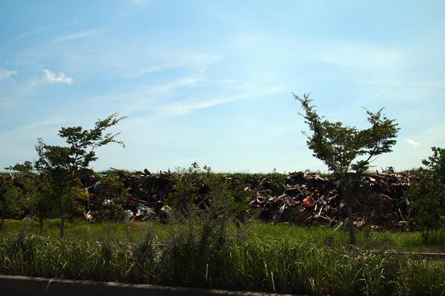 瓦礫に草が生えています。首相は昨日、福島を一時保管場所にして欲しいとのたまいました。沖縄の基地問題とまったく同じ構図です。