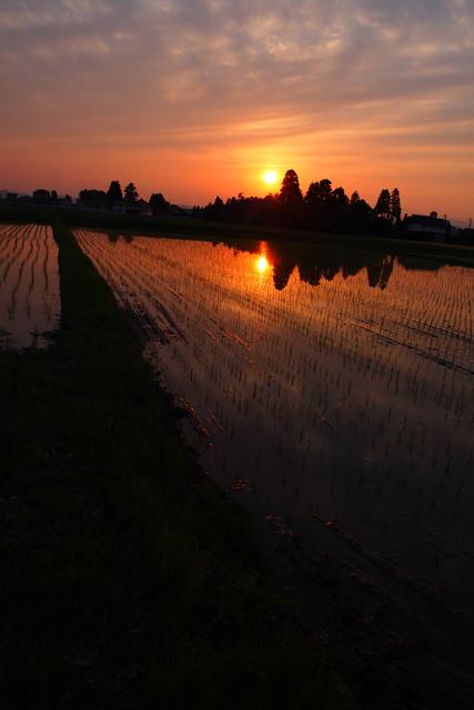 田んぼに沈む夕陽、楽屋より。