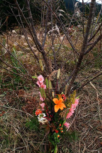 中学生がくれた花束は太陽の子の教え通りに。