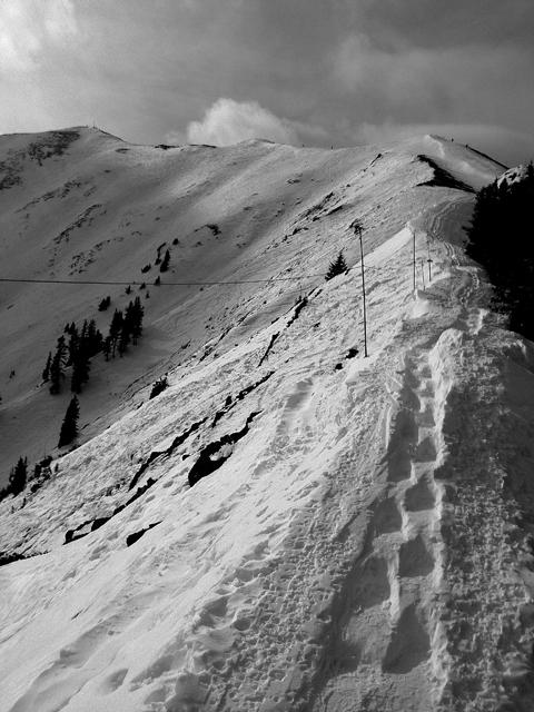 前に登った人の轍があるから、何とか進めるけど。本来スキーってこういうことなのね、と。