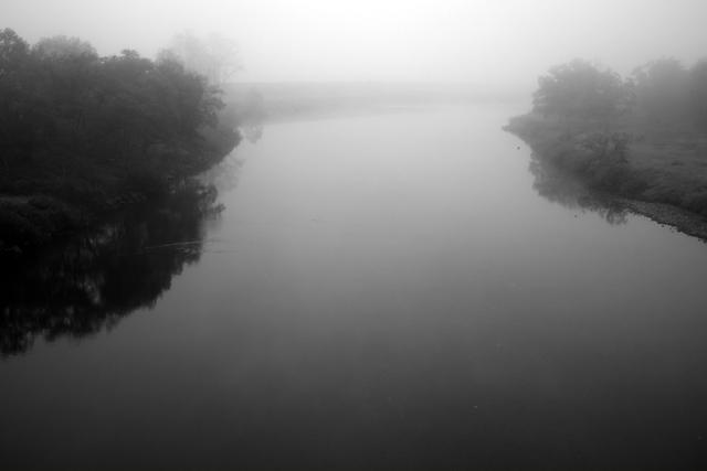 鮭が戻ってくる川。鮭川です。