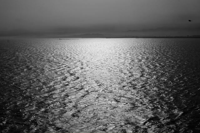 あの海岸線を見えなくなるところまで毎日走って帰ってくるオレは相当アホだと思った。