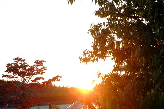 中津川に陽は落ちて。