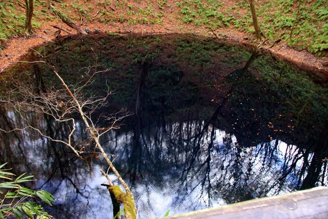 青い池。ほんとに青かったよ。