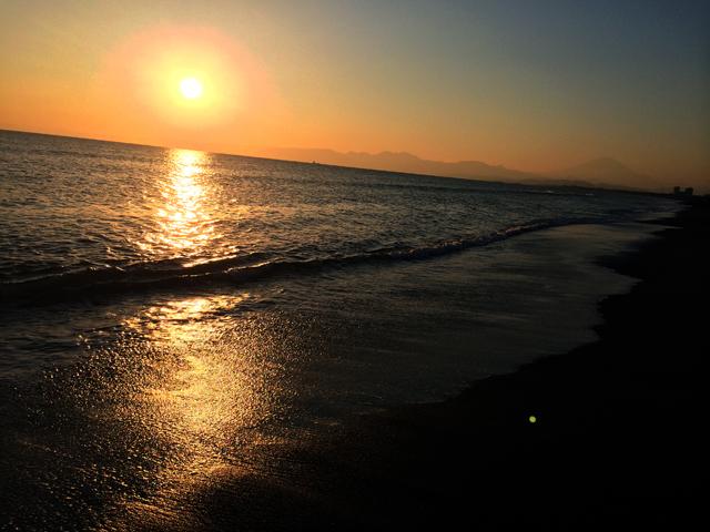 日本に帰ると新人は夕陽評論家になるとよ。