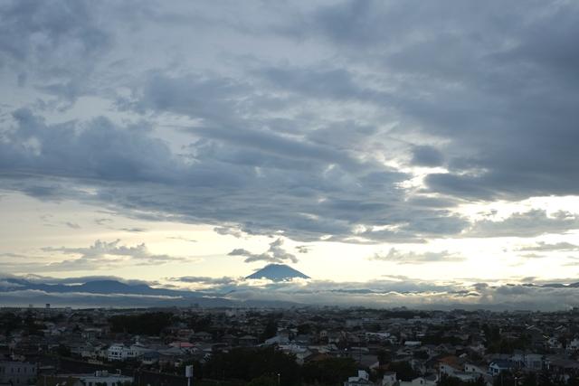 屋上から見える富士山がすごかった。