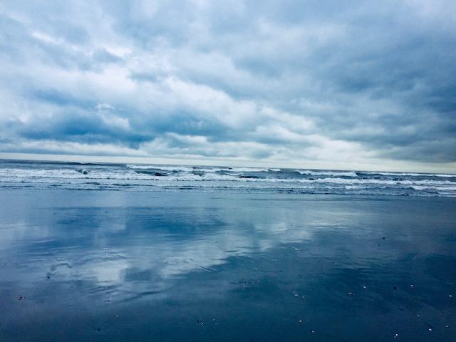 僕が毎日走ってる海とつながってるんだけど、ここじゃ獲れないんだよ。