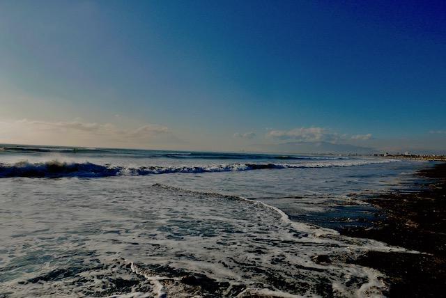 本日の海。